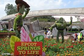 ww goes to wdw at yesterland com epcot flower u0026 garden festival 2011