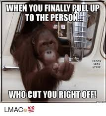 Sexy Monkey Meme - 25 best sexy pictur memes