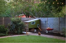 is a backyard chicken coop right for you