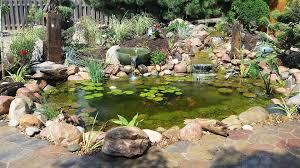Aquascapes Of Ct Ndh Aquascapes Pond Installation Maintenance U0026 Repair In