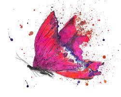 pink butterfly canvas wall art butterflies butterfly wall art