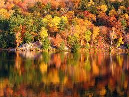 places fall foliage quiet corner