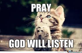 Praying Memes - cat praying 3 by cchong2020 meme center