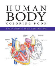 Adult Coloring Books Barnes Noble The Coloring Book