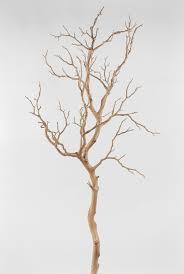 decorative tree branches decorative tree branches canada best tree 2017