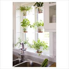 indoor kitchen garden ideas indoor herb garden ideas 3 holistic