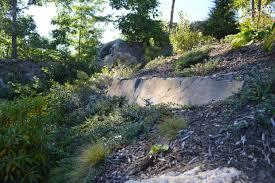 native plantings ecological restoration a landscape architect u0027s perspective