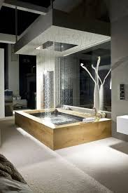 Shower Designs For Bathrooms Best 25 Waterfall Shower Ideas On Pinterest Amazing Bathrooms