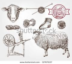 sheep head stock images royalty free images u0026 vectors shutterstock