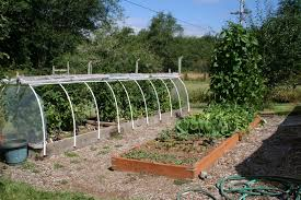 Kitchen Garden Designs Using Pressure Treated Lumber For Raised Garden Beds Don U0027t Do It