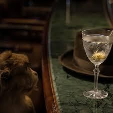 martini dry martini monkey 47 u2013 schwarzwald dry gin