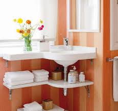 Bathroom Sink Organizer Gorgeous Under Bathroom Sink Organization Ideas Bathroom