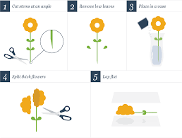 how to press flowers 4 ways to press flowers step by step