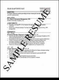 Resume For Job Interview by Saleslady Resume Samples