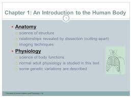What Is Human Anatomy And Physiology 1 An Introduction To The Human Body Lecture Outline Ppt Video