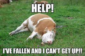 Help I Ve Fallen Meme - help i ve fallen and i can t get up life alert quickmeme