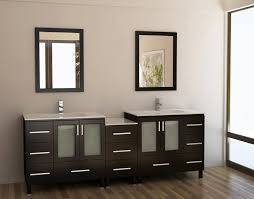 Where Can I Buy Bathroom Vanities Magnificent Contemporary Bathroom Vanities For Less With Stainless