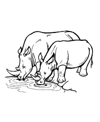 rhino free animal coloring pages printable animal coloring pages