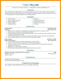 web developer resume python developer resume web developer resume sle 7 web developer