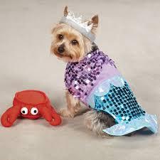 Mini Dachshund Halloween Costumes Mermaid Ariel Dog Costume Plush Sebastian Toy