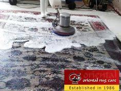 Wool Rug Cleaning Service Best Oriental Rug Cleaning Service In Fort Lauderdale Oriental