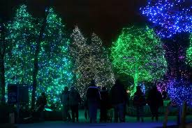 toledo zoo u0027s lights before christmas again nominated for national
