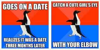 Socially Awkward Penguin Memes - socially awesome penguin meme
