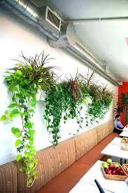 plant wall hangers indoor wall mount plant hangers wall mounted plants wall mounted planters