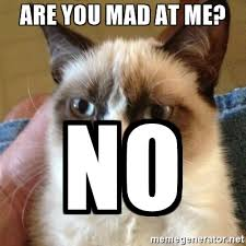 Are You Mad At Me Meme - are you mad at me no grumpy cat meme generator