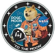 Dogecoin Meme - from meme to money dogecoin steemkr