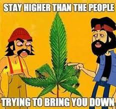 Cheech And Chong Memes - cheech chong stay higher cartoon weed memes