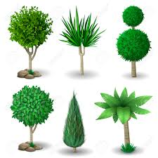 set of ornamental plants and trees for landscaping vector