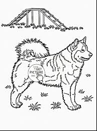Dog Coloring Pages New Beautiful Coloring Pages Fresh Https I Pinimg