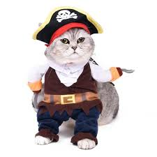 full pirate costume for dog or cat