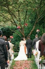 small backyard weddings small weddings in san antonio my dream