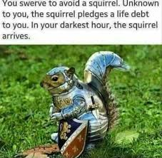 Swerve Memes - dopl3r com memes you swerve to avoid a sqirrel unknown to you