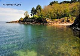 Brixham Holiday Cottages by Plover 3 The Cove Plover 3 The Cove Brixham Modern