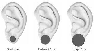 white stud earrings white bridal pearl flower stud earrings clip on earrings