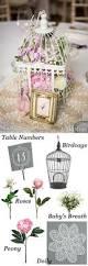best 25 bird cage decoration ideas on pinterest birdcages