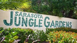 Botanical Gardens Sarasota Fl Get To About Sarasota Jungle Gardens In Florida
