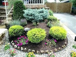 Bushes For Landscaping Cheap Bushes For Landscaping Landscaping Bushes Landscaping Bushes