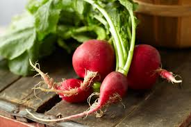 this root vegetable is a natural antifungal the candida diet