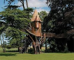 Cool Tree Houses 45 Best Cool Treehouses Images On Pinterest Treehouses