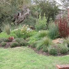 Backyard Gardening Ideas by Best 25 Garden Design Online Ideas On Pinterest Privacy Trellis