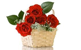 30 valentine roses for boyfriends and girlfriends happy