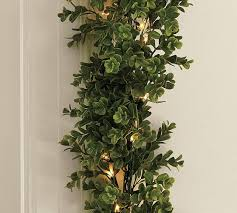 lit boxwood collection pottery barn
