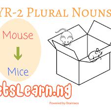 year 2 plural nouns worksheet letslearn