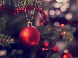 The Christmas Tree In The Bible - cbn news top breaking world news christian perspective
