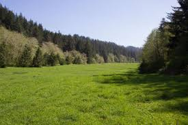 Valley Oregon Enchanted Valley Oregon Hike Hiking In Portland Oregon And