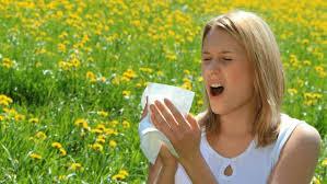 46 best sexpedia images on pinterest itu agar and allergies